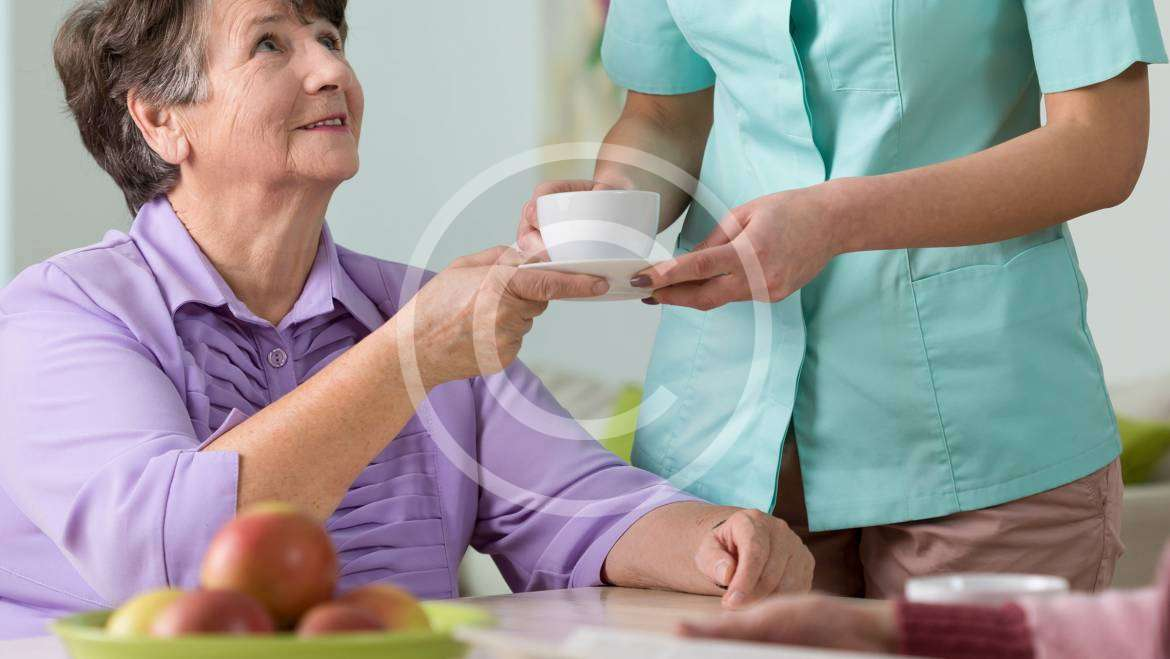 Eating Healthy to Support Successful Ageing